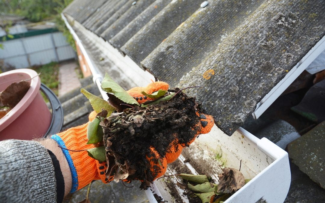How To Clean Gutters and Why It's Important
