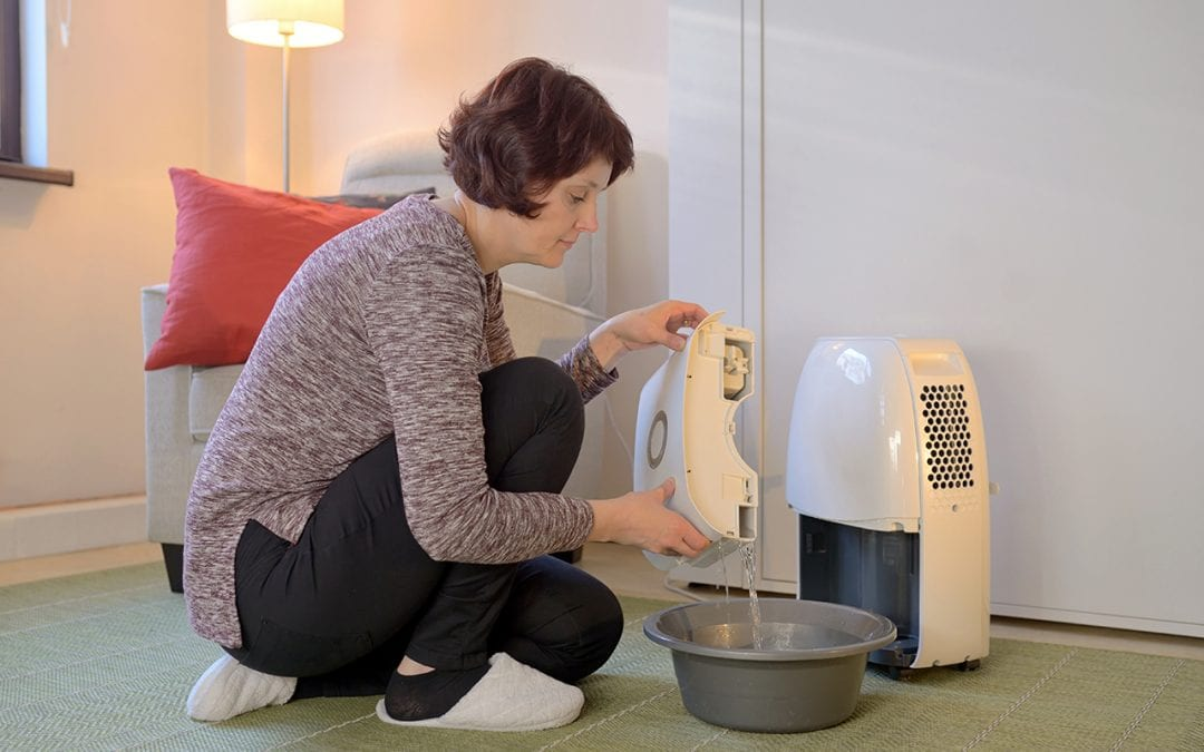 Learn How to Reduce Humidity in Your Home With This Guide